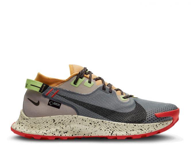 Nike Pegasus Trail 2 Gore-Tex heren